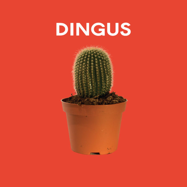 Dingus - Dingus